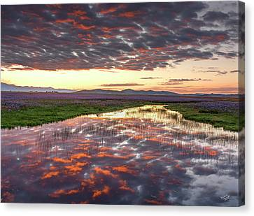Canvas Print featuring the photograph Camas Spring Sunrise by Leland D Howard