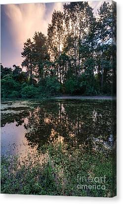 Cambodian Backwater Cloudscape Canvas Print by Mike Reid