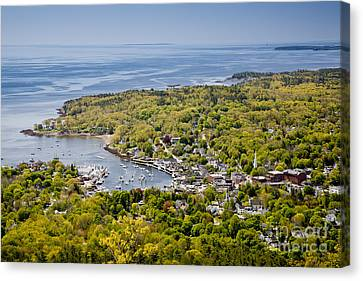 Mid-coast Maine Canvas Print - Camden View by Susan Cole Kelly