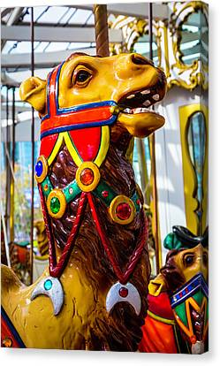 Camel Carrousel Ride Canvas Print by Garry Gay