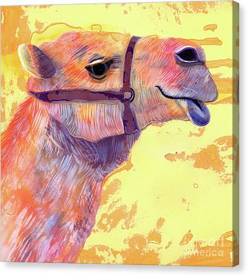 Camel Canvas Print - Camel by Jane Tattersfield