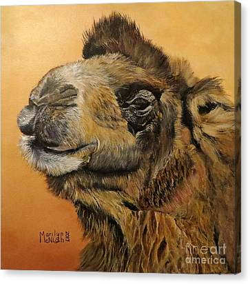 Canvas Print - Camel by Marilyn McNish