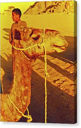 Camel Ride Canvas Print by Elizabeth Hoskinson
