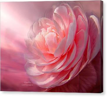 Camellia Canvas Print by Carol Cavalaris