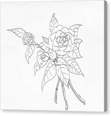 Camellia  Canvas Print by Hae Kim