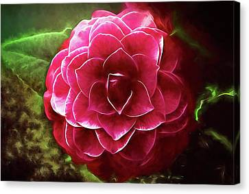 Camellia Nuccio's Bella Rossa  Canvas Print