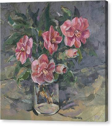Camellias Canvas Print by Sue Wales