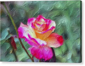 Cameo Canvas Print by Don Wright