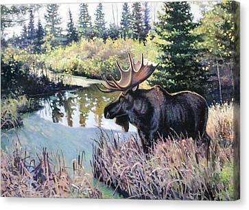 Camp 20 Creek Moose Canvas Print by Larry Seiler
