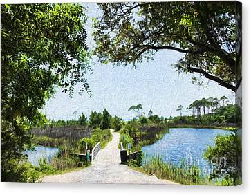 Camp Helen State Park Walkway To The Gulf Of Mexico Canvas Print by Vizual Studio