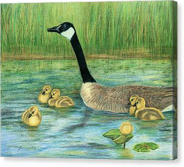 Canvas Print featuring the painting Canada Goose And Goslings by Jeanne Kay Juhos