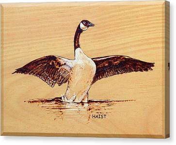 Canvas Print featuring the pyrography Canada Goose by Ron Haist