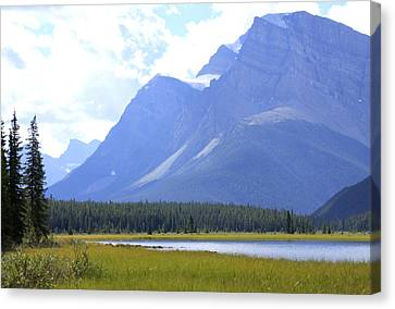 Canadian Mountains Canvas Print by Catherine Alfidi