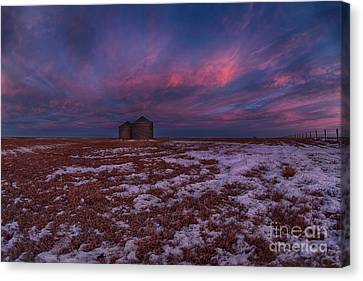 Canadian Dawn Canvas Print by Ian McGregor