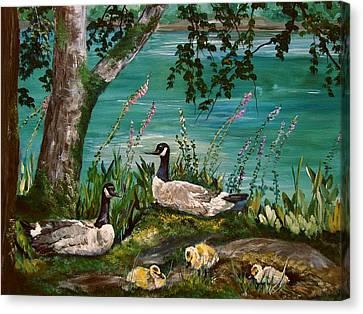 Canadian Geese At Nw Trek Canvas Print by JR Hawse