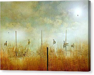 Canadian Marsh Canvas Print - Gossip by Diana Angstadt