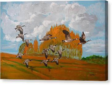 Canadian Geese Canvas Print by Richard Le Page