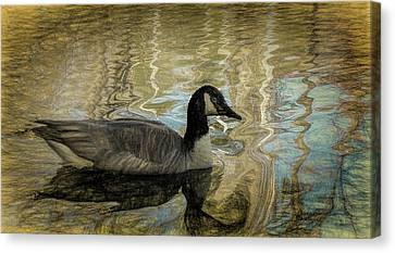 Canvas Print featuring the painting Canadian Goose by Steven Richardson