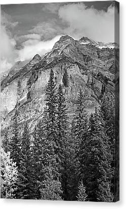 Canadian Rockies No. 2-2 Canvas Print