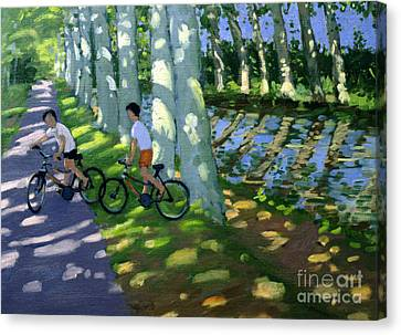 Dappled Light Canvas Print - Canal Du Midi France by Andrew Macara