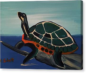 Canal Pointe Turtle Canvas Print