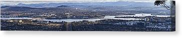 Canberra Panorama From Mt Ainslie Canvas Print by Steven Ralser