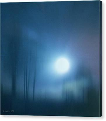 Cancerian Moon Canvas Print by Nita Sweeney