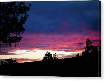 Candy-coated Clouds Canvas Print by Jason Coward
