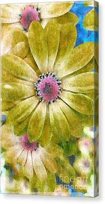 Contrast Canvas Print - Candy Garden by Molly McPherson