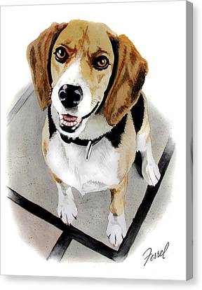 Canine Cutie Canvas Print by Ferrel Cordle