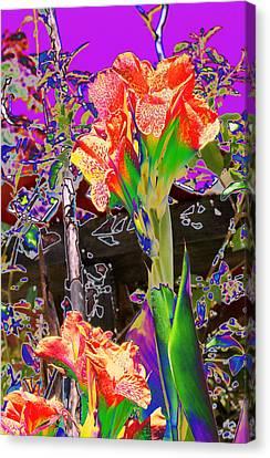 Canna Abstract 8 Canvas Print