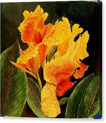Canna Lilies Canvas Print
