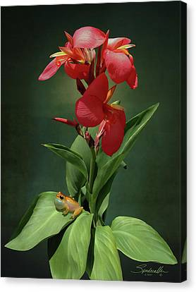 Canna Lily And Hourglass Tree Frog Canvas Print by IM Spadecaller
