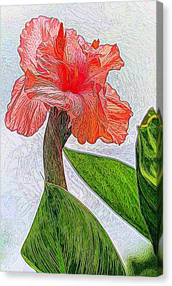 Canna Lily Art Canvas Print by Geraldine Scull