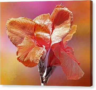 Canna Lily Canvas Print by HH Photography of Florida