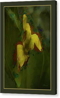 Canna Lily Impression Canvas Print