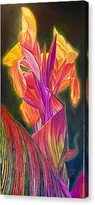 Canna Lily Canvas Print by Julie Martin