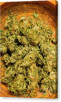 Cannabis Bowl Canvas Print by Jorgo Photography - Wall Art Gallery