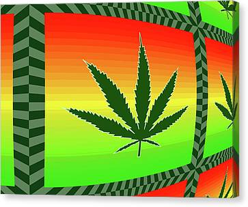 Canvas Print featuring the mixed media Cannabis  by Dan Sproul