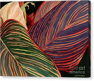 Cannas Leaves Canvas Print by Kenneth Hershenson
