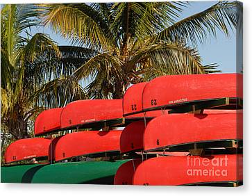 Canoe's At Flamingo Canvas Print by David Lee Thompson