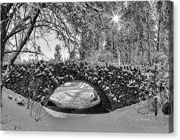 Canon Hill Park Winter - Black And White Canvas Print by Mark Kiver