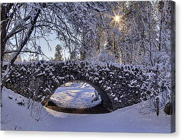 Cannon Hill Park Winter Canvas Print by Mark Kiver