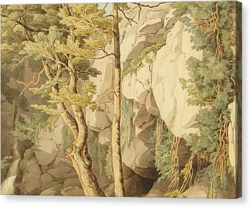 Canonteign  Devon Canvas Print
