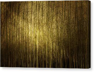 Can't See The Forest For The Trees Canvas Print by Rebecca Cozart