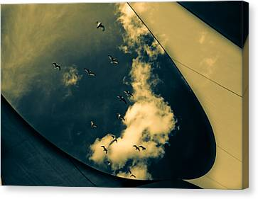 Canvas Seagulls Canvas Print by Bob Orsillo
