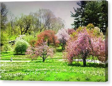 Canvas Print featuring the photograph Garden Canvas  by Diana Angstadt