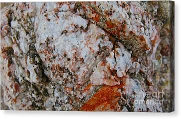 Canyon Blend Canvas Print by PJ  Cloud