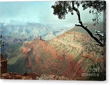 Canyon Captivation Canvas Print