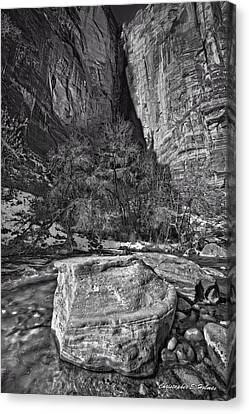 Canvas Print - Canyon Corner - Bw by Christopher Holmes